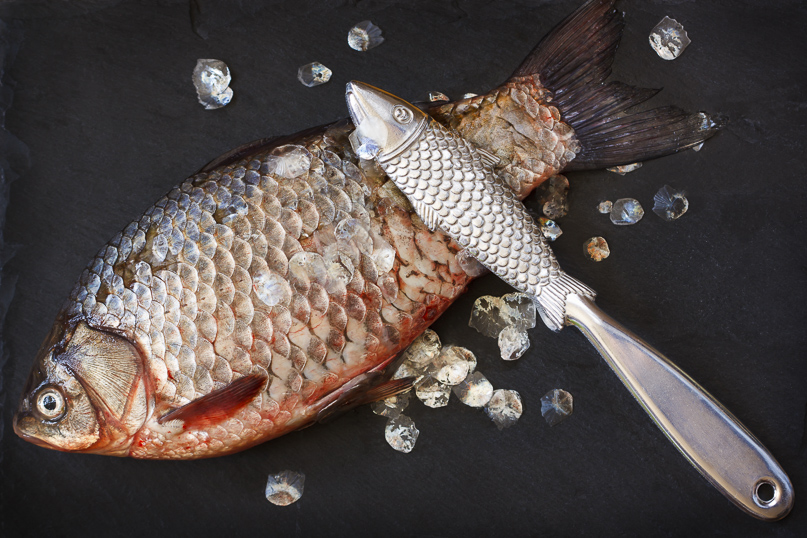 How To Gut & Scale Fish
